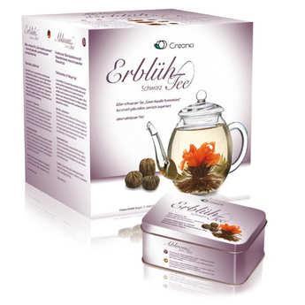 Creano - Coffret théière et 6 fleurs de thé noir