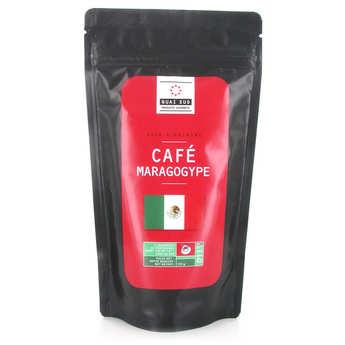 Quai Sud - Mexican Maragogype Coffee